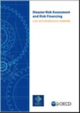 G20/OECD Methodological Framework DRR